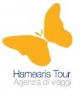 Hamearis Tour